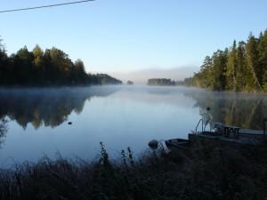 Naturbilder september 2010 030